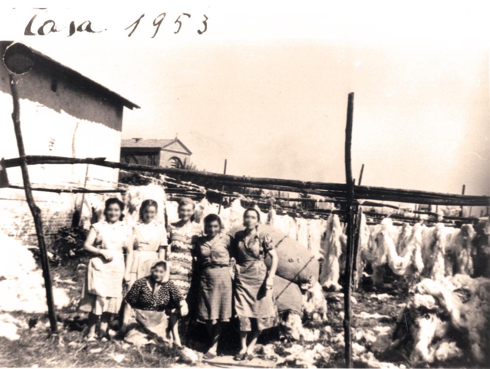 Mandelli Materassi - Rifacimento Materassi in Lana - storica